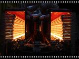12 het Vormen van de Slag van de Fles van het Huisdier van holten Volledige Automatische Roterende Machine