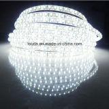 12V luminosi eccellenti IP65 impermeabilizzano l'illuminazione di striscia dei 3014 LED