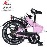 "20 "" faltbares elektrisches Fahrrad des Aluminiumlegierung-Rahmen-36V (JSL039BL-1)"