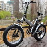 脂肪質のタイヤ山の電気バイクのEbike浜の巡洋艦の電気バイク