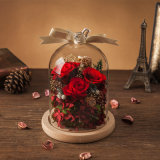 Fiore reale naturale della Rosa in vetro per il regalo del biglietto di S. Valentino