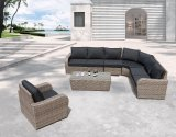 Meubles extérieurs réglés de salon de Douvres de sofa de rotin de jardin de patio (J653)