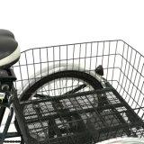 """24대의 """" 판매에 오두막을%s 가진 3개의 바퀴 성숙한 전기 화물 거물 세발자전거"""