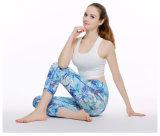 De Kleren van de Fitness van de Slijtage van de Sport van de Yoga van de Vorm van het lichaam
