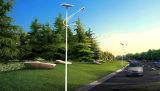 Le contrôle de réverbère de DEL et le système de commande solaires integrated secs rassemblent des caractéristiques