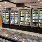 냉각하거나 어는 내각에 있는 슈퍼마켓 또는 편리점 수직 유리제 문 범위