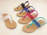 Обувь женщин горячих сбываний пластичная