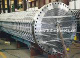 Wärmetauscher-Rohrbündel Soem-Fabrik