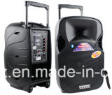 12 Zoll-Lautsprecher-Kasten aufgebaut im Bluetooth Verstärker-drahtlosen Mikrofon F87