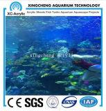 Projeto acrílico redondo transparente do restaurante do aquário