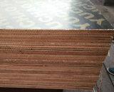 Zweimal betätigten das Film gegenübergestellte Furnierholz, das für Aufbau verwendet wurde