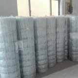 le bétail galvanisé lourd élevé de joint de charnière de 0.9m maille la clôture pour le marché du Pérou