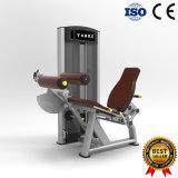 素晴らしい試しの体操の適性の装置によってつけられている足カール