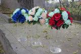 Vase acrylique clair à étalage de fleur de Vanda
