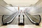 Venta caliente automática eléctrica escaleras mecánicas Precio en China