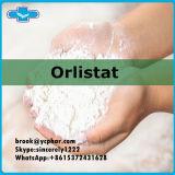 효과적인 화상 지방질을%s 뚱뚱한 손실 약제 처리되지 않는 분말 Orlistat