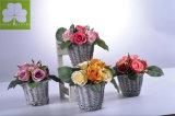 인공적인 소형 로즈  등나무 &#160에 있는 Boquet T; 바구니  선물을%s