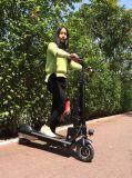 Das populärste faltende E-Fahrrad leistungsfähige elektrische Fahrrad