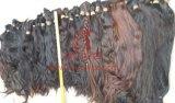 Extensão intata do cabelo das cutículas naturais não processadas de Remy do Virgin