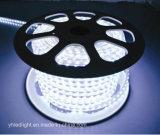 5050 방수 유연한 RGB LED 지구
