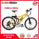 Bicicleta elétrica elétrica Ebike de MTB
