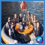 ギャザーの余暇の公園のための電気ガラス繊維BBQドーナツボート