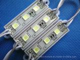 modulo IP65 di 3LED 5054 SMD LED per la pubblicità degli indicatori luminosi