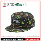 Sombrero colorido del Snapback del diseño con bordado de Applique tejido