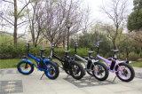 뚱뚱한 전기 자전거 20inches 48V 500W 전기 뚱뚱한 타이어 자전거