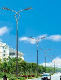 La mejor luz de calle solar de los 10m poste 100W LED del precio