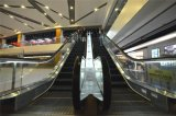 Vvvf Safe Mechanical Passenger Escalator