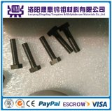 Viti del tungsteno personalizzate formato a temperatura elevata e del molibdeno del rifornimento della fabbrica vario & noci & bulloni