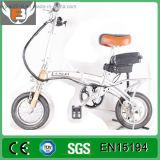 Heißes Verkaufs-Form-Lithium-Batterie-faltbares elektrisches Fahrrad