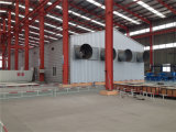 Cost basso Broiler House e Equipment