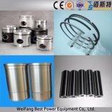 gruppo elettrogeno diesel di potere di 300kw Weichai