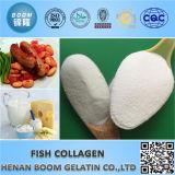 Colagénio dos peixes da boa qualidade como aditivos de alimento e cosméticos