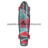 Piattaforma Skateboard di x6 Inch Graphic Sticker Penny Cruiser di Popular su ordinazione 22 ''
