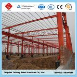 Edificio de la estructura del marco de acero de la luz del palmo ancho de la ISO y del Ce