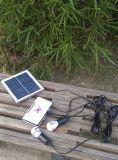 Mercados rurais solares que iluminam o sistema claro com a lâmpada de prata dourada do diodo emissor de luz 3W 1W