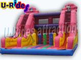 多彩な十字橋膨脹可能なスライド