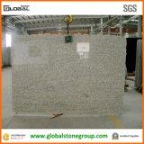 Бразилия Санта Cecilia (Giallo Cecilia) Granite для Countertops/Tiles