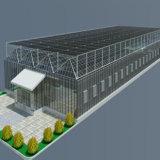 Serra di vetro della Multi-Portata del fornitore della Cina