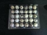 Отверстия упаковщиков подноса 24 яичка триперсток контейнера коробки яичка триперсток любимчика пластичные упаковывая