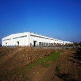Vor-Ausgeführte helle Stahlkonstruktion-Werkstatt mit Overheaded Haken-Kran (KXD-SSW32)