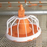 Poultry automatique Feeding Equipment pour Broiler et Chicken