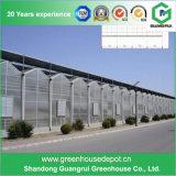 판매를 위한 구조를 가진 Venlo 유형 유리제 온실