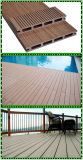 Bordi di legno decorativi di Decking del pavimento