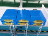 Batteria di litio approvata del polimero di alta qualità 24V 10ah del Ce, batteria di 12V 17ah 20hr, batteria di 24V 200ah