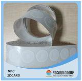 Contact van pvc van pvc RFID het Slimme/IC Markering Zonder contact met Spaander
