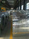 Aço galvanizado mergulhado quente Coil/Gi de Shandong China